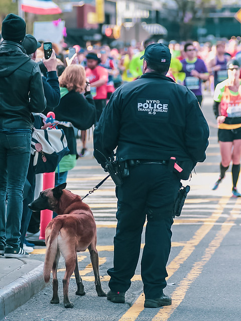 2019 NYC Marathon