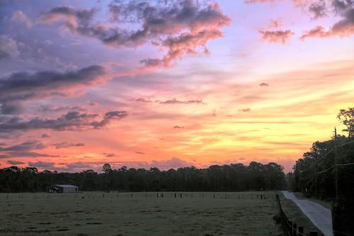 canon florida kathrynlouise barn landscape farm sunrise deltona volusia pasture homestead roberthunterlyrics gratefuldeadlyrics
