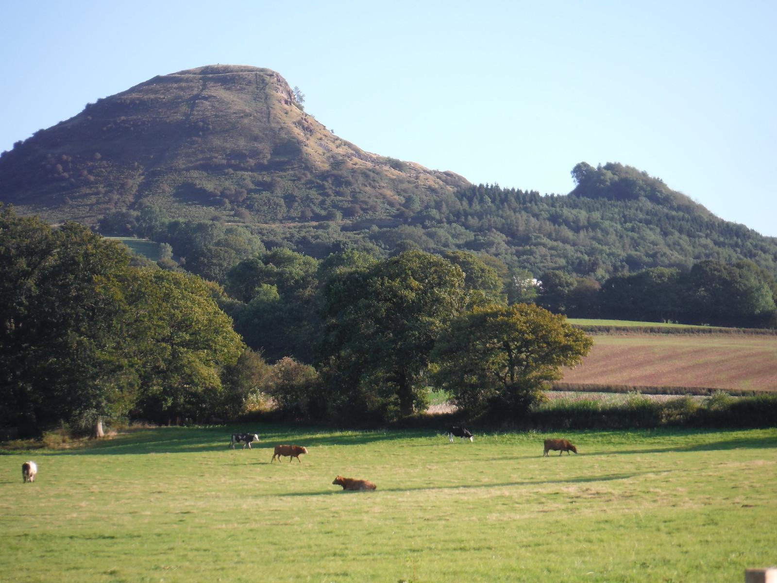 Backview of Prow of The Skirrid (landslip on right-hand side) SWC Walk 347 - Llanvihangel Crucorney Circular (via Bryn Arw and The Skirrid)