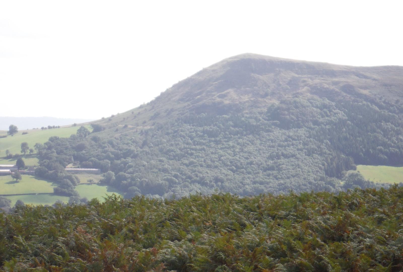 Northerly End of the ridge of The Skirrid, from Bryn Arw SWC Walk 347 - Llanvihangel Crucorney Circular (via Bryn Arw and The Skirrid)