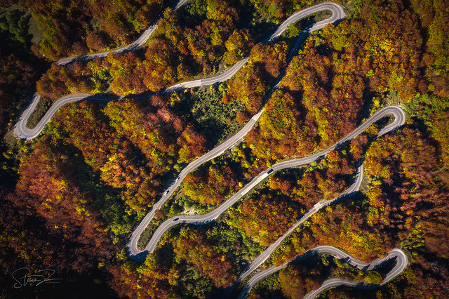 Montenegrin roads