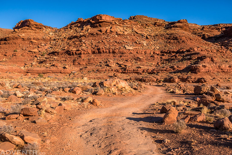 White Rim Road II