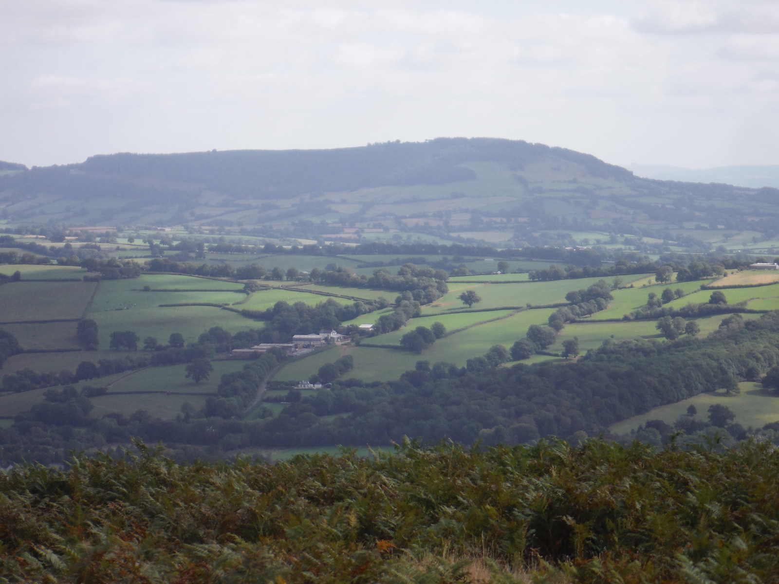 (Most of) the ridge of The Skirrid, from Bryn Arw SWC Walk 347 - Llanvihangel Crucorney Circular (via Bryn Arw and The Skirrid)