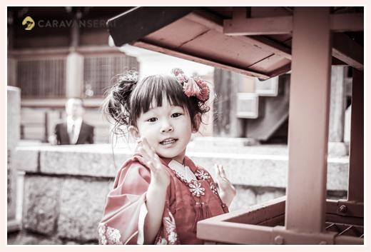 景行天皇社で七五三 お賽銭箱にお金を入れる3歳の女の子