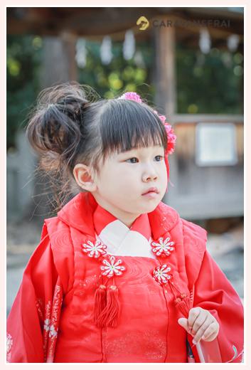 七五三 3歳の女の子 赤い被布 赤い髪飾り