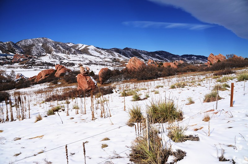 Coyote Song Trail (88)