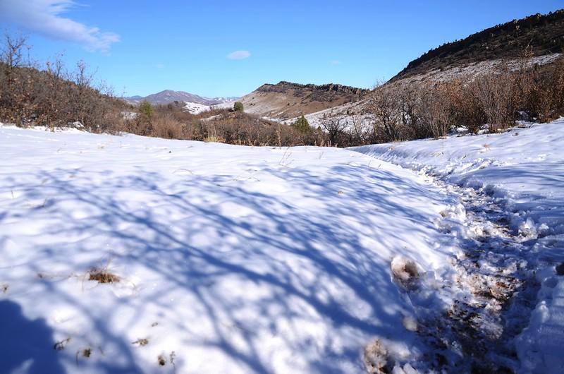 Columbine Trail (63)