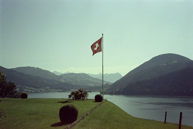Swiss Pride  (Astrum/Svema 135)