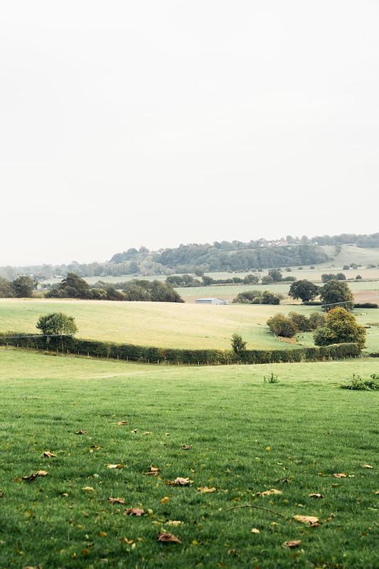 Rye-landscape