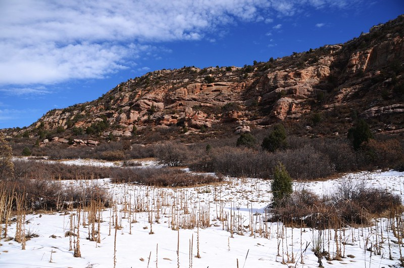 Coyote Song Trail (103)