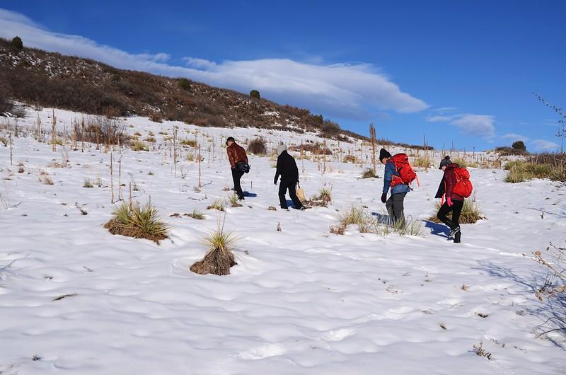 Columbine Trail (12)