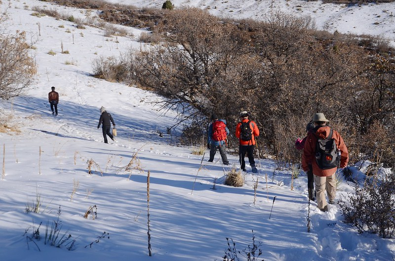 Columbine Trail (6)