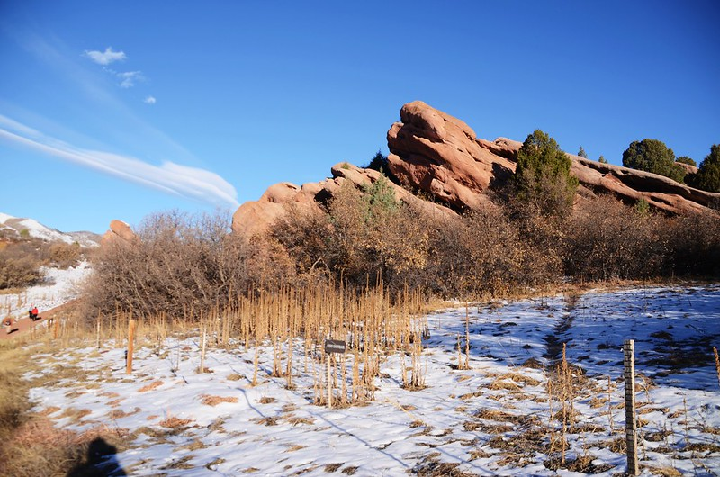 Coyote Song Trail (20)