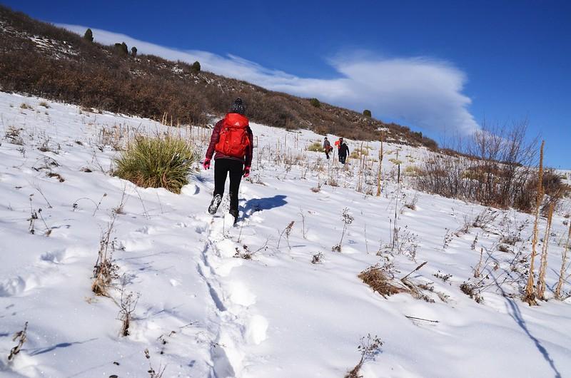 Columbine Trail (48)