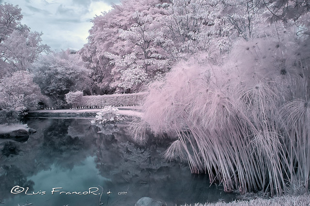 Paisaje Infrarrojo 720nm - Infrared landscape 720nm