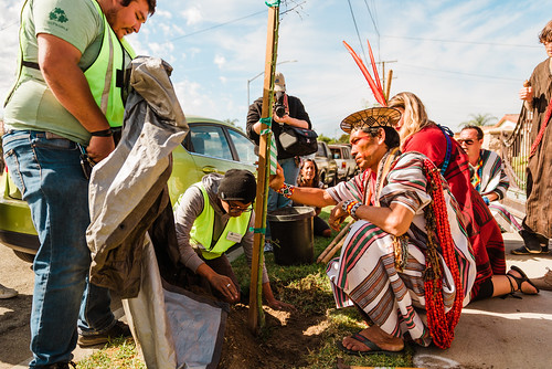 TreePeople - Huntington Park tree planting with Benki Piyako