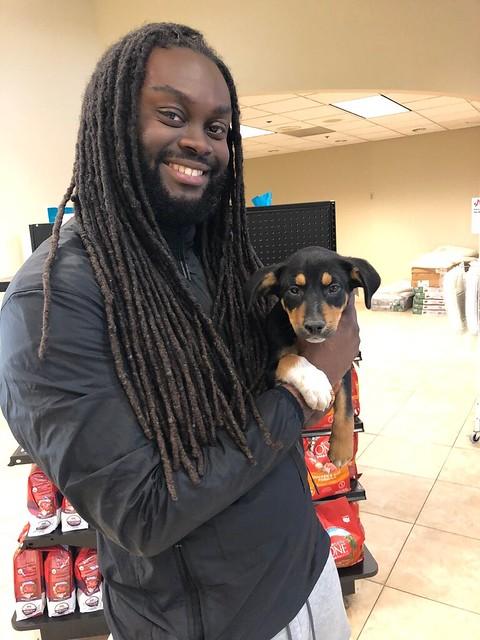November 2019 Adoptions