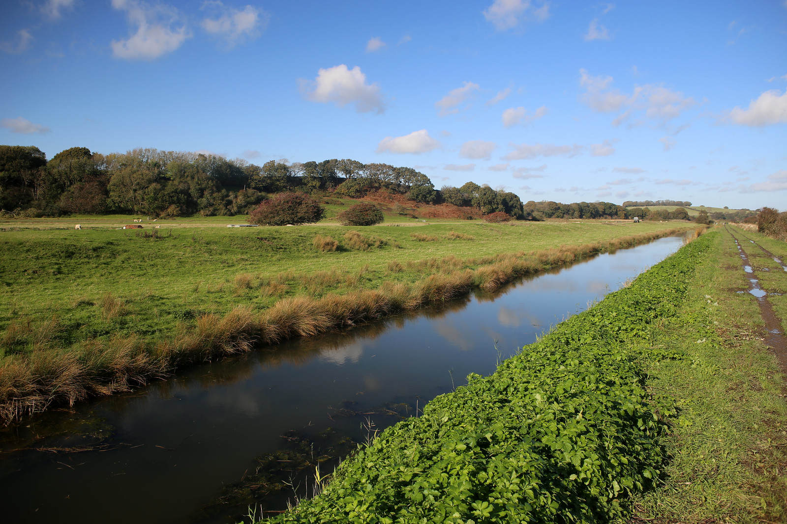 The Royal Military Canal near Winchelsea