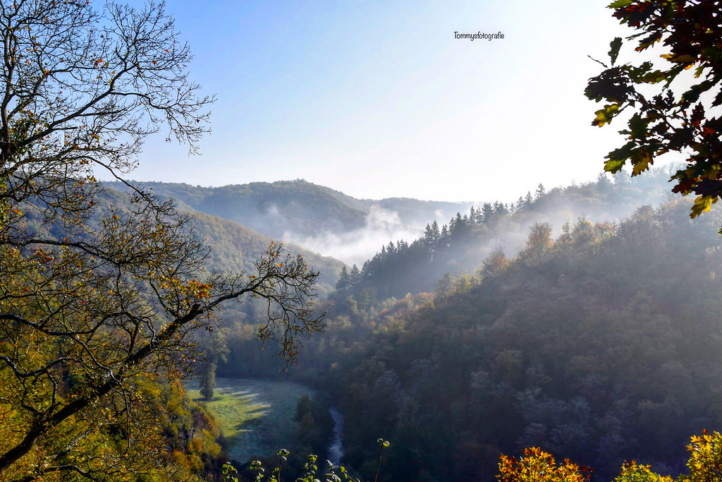 Landscape of the Eifel in the middle of Germany  Early cold morning in autumn