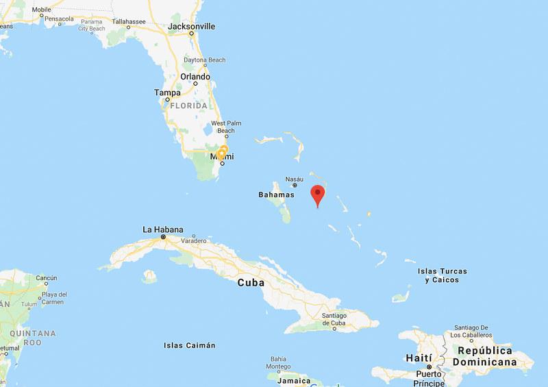 Cerditos nadadores Bahamas-3