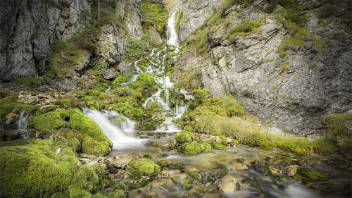 _DSC3693_2 Sentiero delle Cascata di Vallesinella - Dolomiti di Brenta - Trentino / Italia