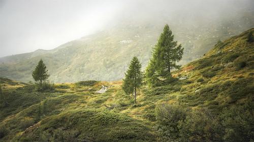 _DSC3719 Escursione al Lago Ritorto - Trentino / Italia