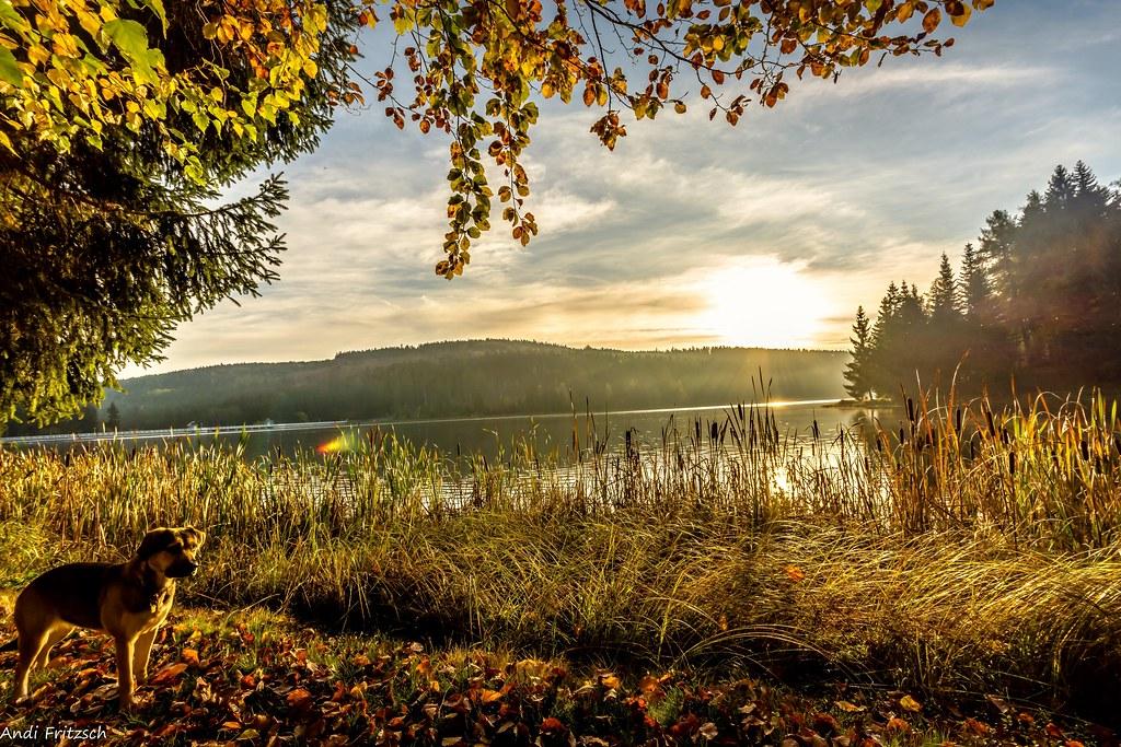 Ein idyllischer Herbstmorgen