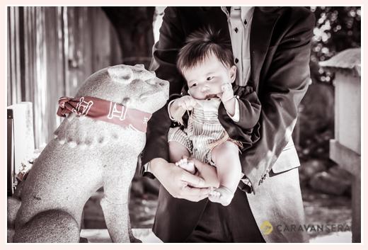 お宮参り 神社の狛犬と対面する赤ちゃん