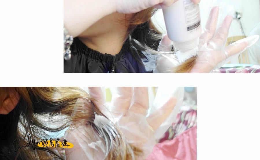 富麗絲染髮劑乾燥玫瑰
