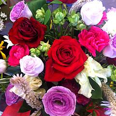 薔薇・トルコ桔梗・和蘭撫子