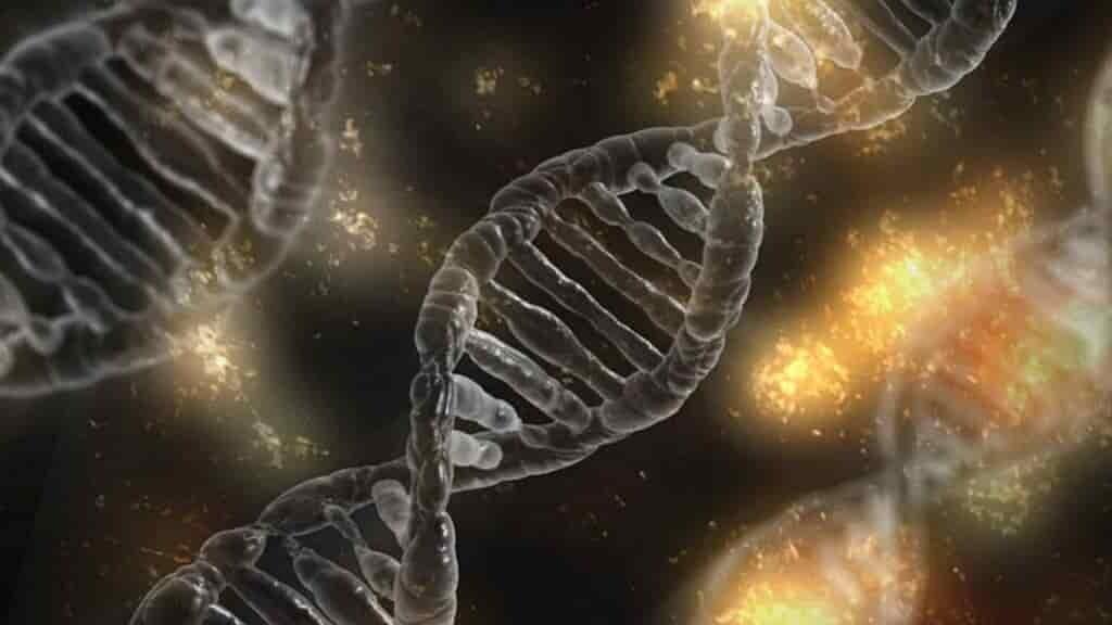 les-gènes-femme-colombie-donnent-indices-contre-la-maladie-Alzheimer