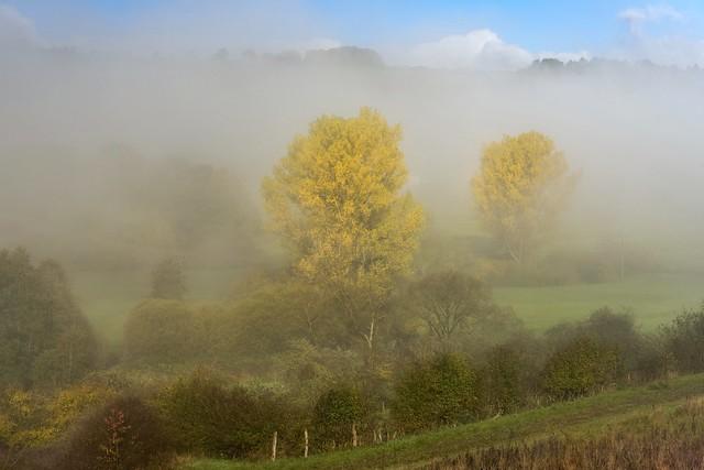 *Herbst im Nimstal*