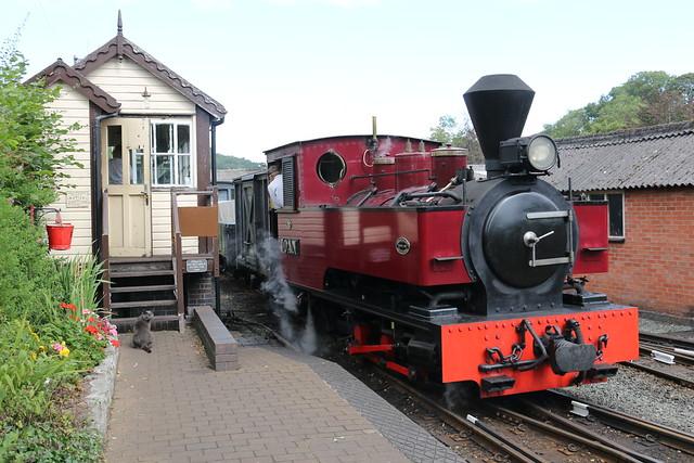 Welshpool & Llanfair Light Railway, Llanfair Caereinion, 1st September 2019 (RAB24613)