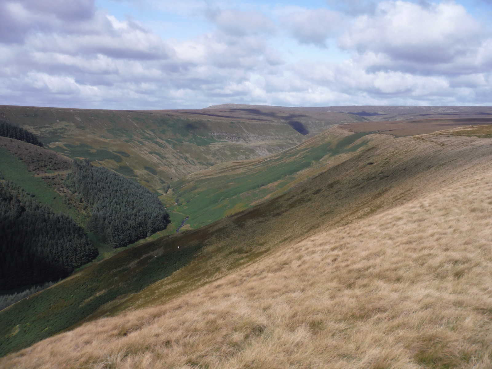Alport Dale towards Bleaklow SWC Walk 350 - Fairholmes Circular (via Bleaklow and Derwent Head)