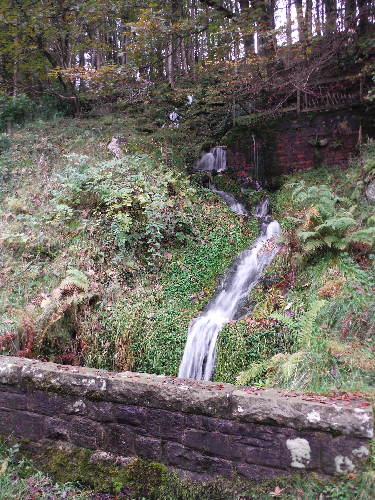 Stream tumbling down the wooded hill near Howden Dam SWC Walk 350 - Fairholmes Circular (via Bleaklow and Derwent Head) [Grinah Stones and Westend Valley Ending]