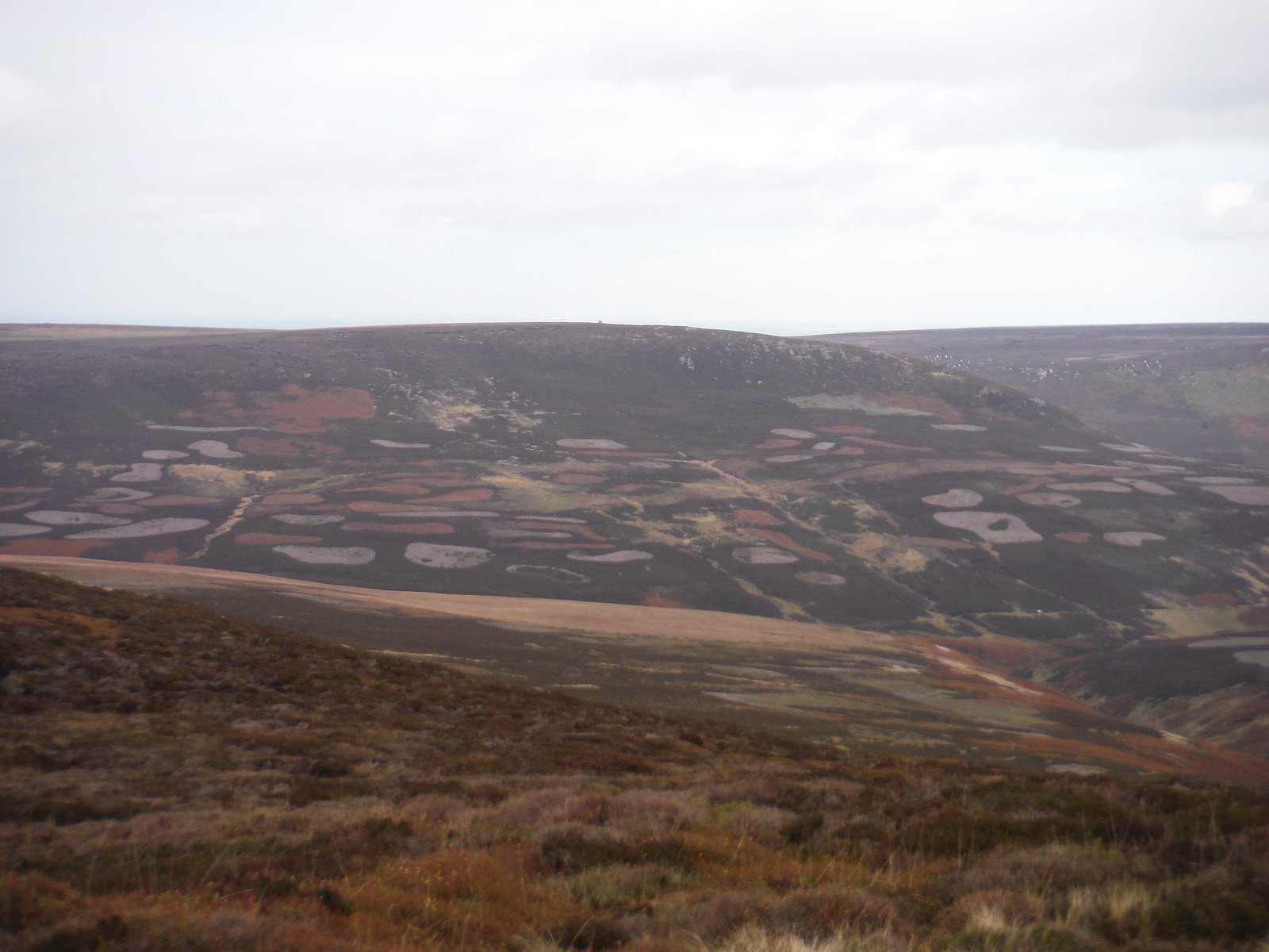 Traces of Planned Heather burning across the Derwent Valley on Howden Dean SWC Walk 350 - Fairholmes Circular (via Bleaklow and Derwent Head) [Grinah Stones and Westend Valley Ending]