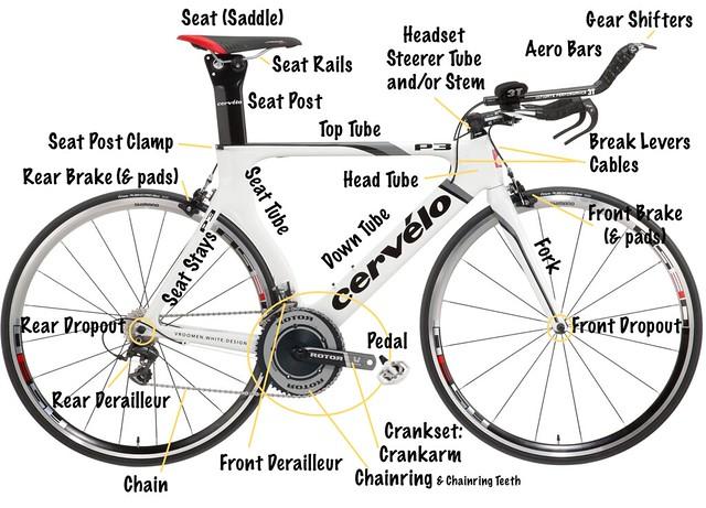 Bike Anatomy WHOLE