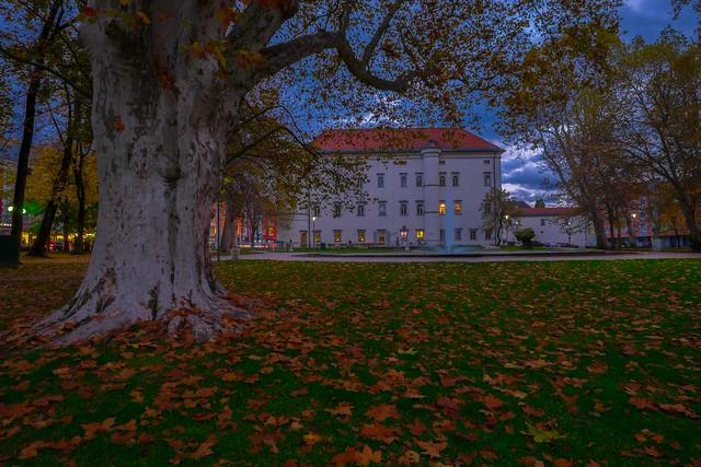 Autumn mood ...