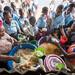 Liberia 2019 - Health and Education