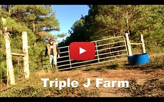 We need 100 subscribers to get a custom channel name. Can you help us? Link to channel in bio, thanks! #youtube #farmers #homesteading #knowyourfarmer