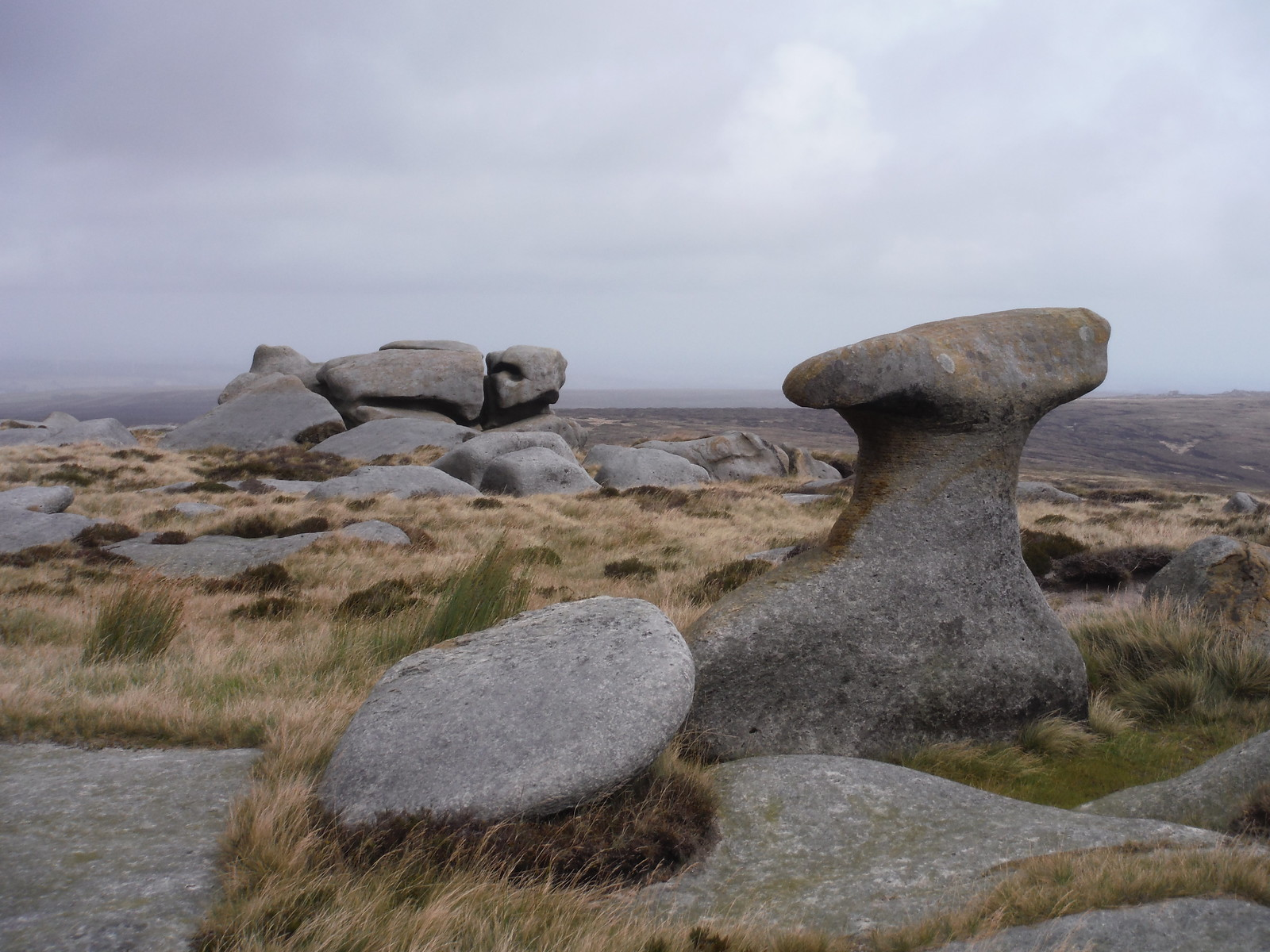 Bleaklow Stones (some of them) SWC Walk 350 - Fairholmes Circular (via Bleaklow and Derwent Head)