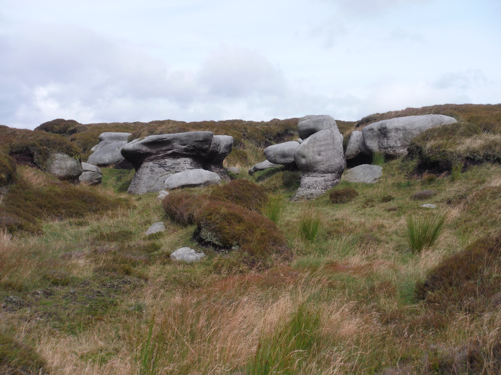 Gritstone Boulders near top of Bleaklow Plateau SWC Walk 350 - Fairholmes Circular (via Bleaklow and Derwent Head)