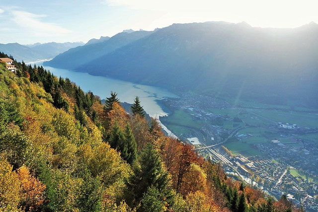 Harder Kulm, Sunrise