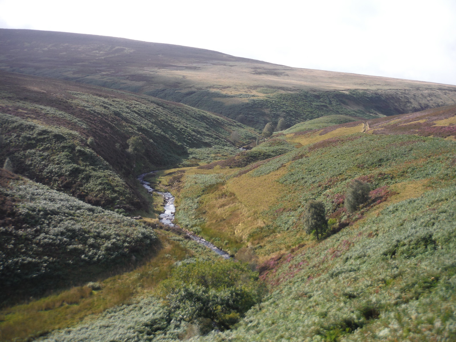 Upper Derwent Valley, with Lower and Upper Small Clough joining on the left SWC Walk 350 - Fairholmes Circular (via Bleaklow and Derwent Head)