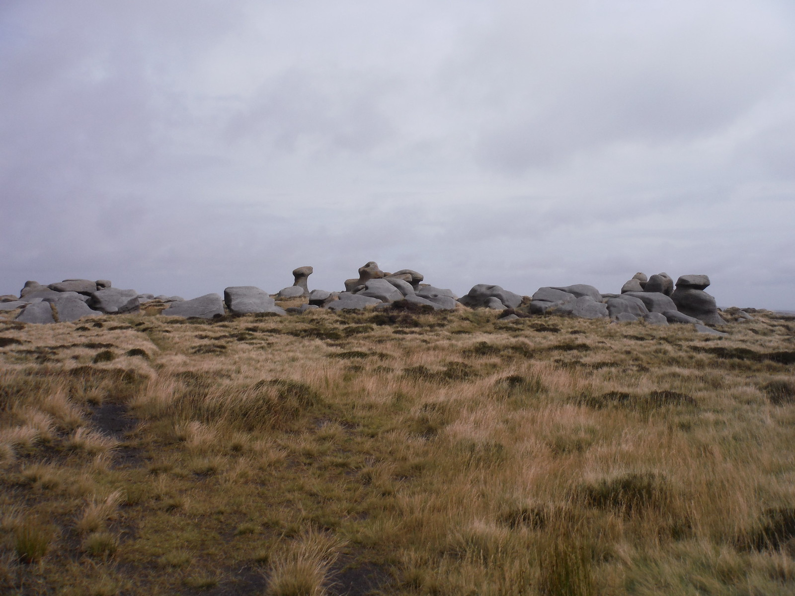 Bleaklow Stones SWC Walk 350 - Fairholmes Circular (via Bleaklow and Derwent Head)