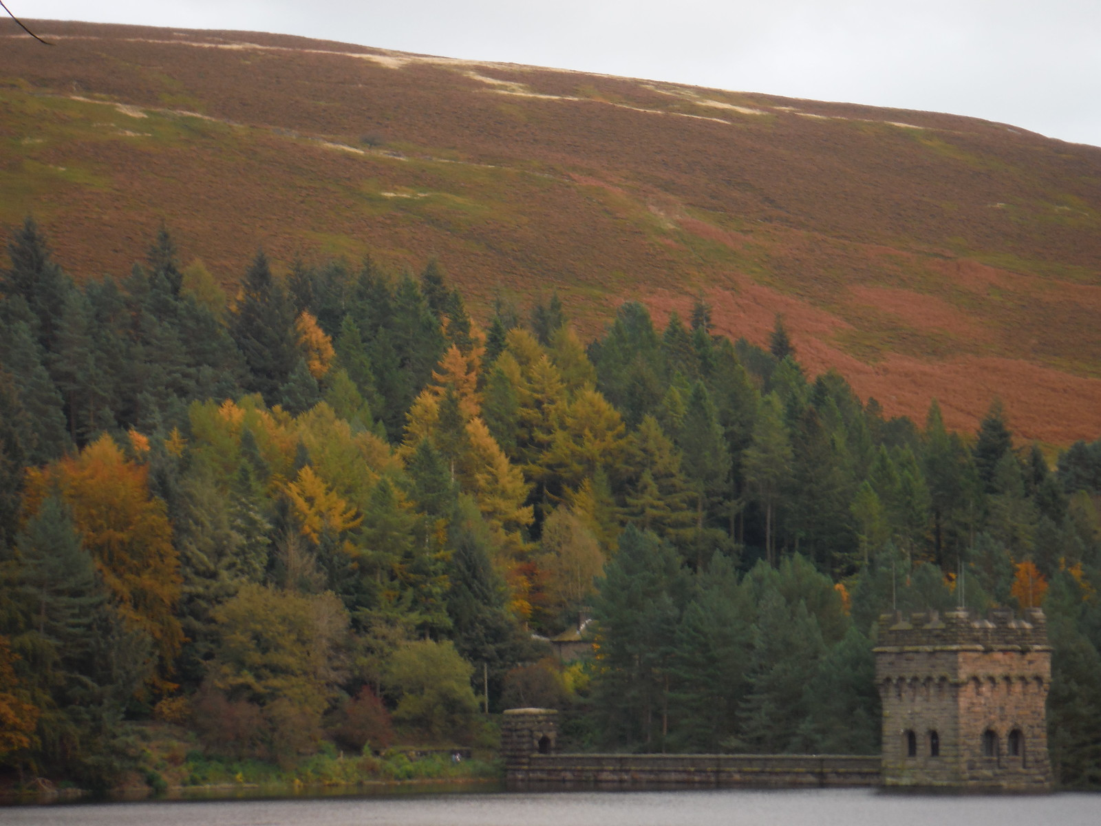 Derwent Dam's East Tower, and Pike Low SWC Walk 350 - Fairholmes Circular (via Bleaklow and Derwent Head) [Grinah Stones and Westend Valley Ending]