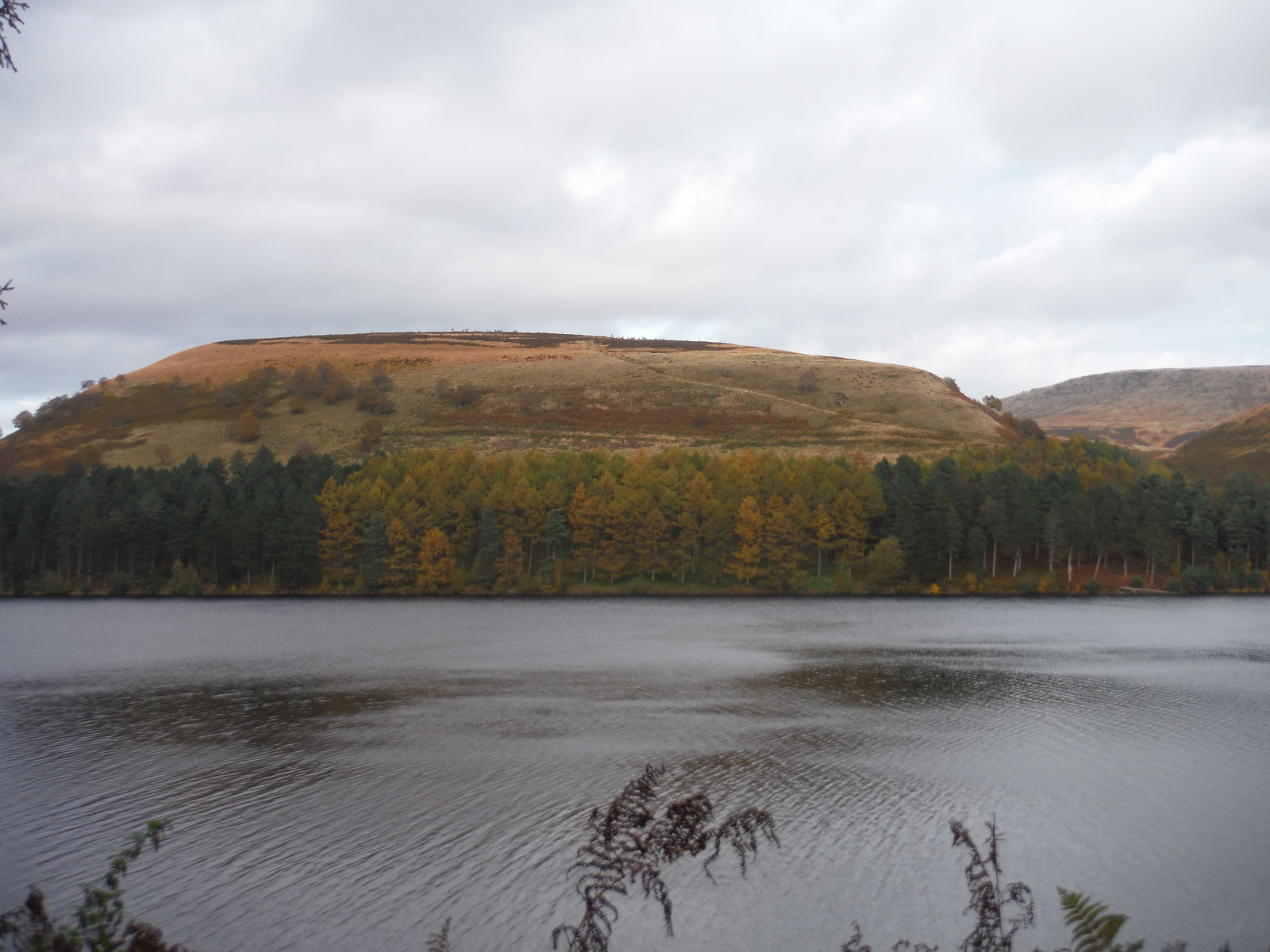 View across Howden Reservoir's westerly arm to Cow Hey SWC Walk 350 - Fairholmes Circular (via Bleaklow and Derwent Head) [Grinah Stones and Westend Valley Ending]