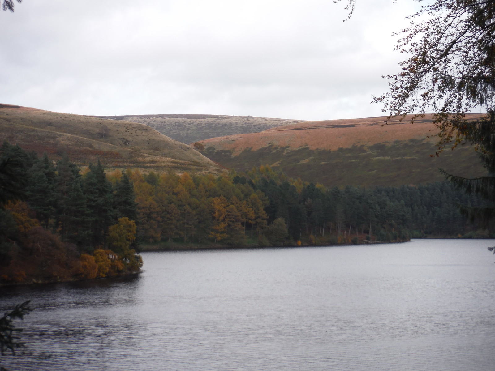 View across Howden Reservoir's westerly arm to Margery Hill (Howden Edge) SWC Walk 350 - Fairholmes Circular (via Bleaklow and Derwent Head) [Grinah Stones and Westend Valley Ending]