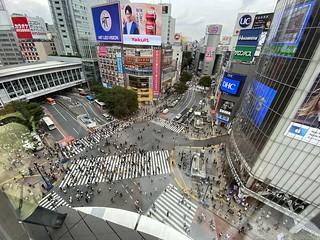 CROSSING VIEW SHIBUYA