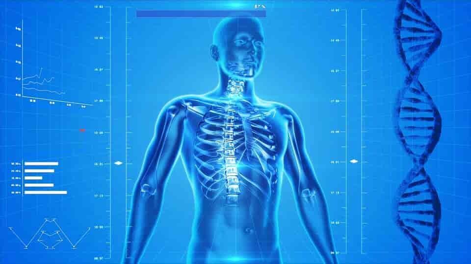 thérapie-génique-contre-plusieurs-maladies-liées-au-vieillissement